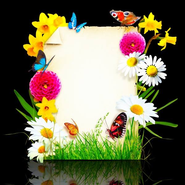 flowers composition photo frame spring flowers