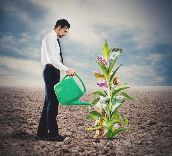 businessman watering money plant