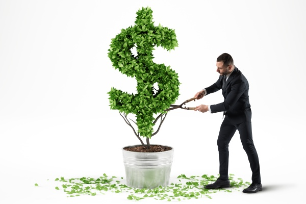 potted plant with dollar shape 3d