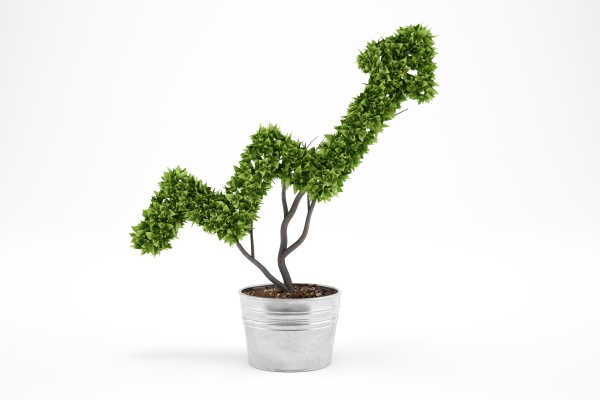 growing the economy company 3d