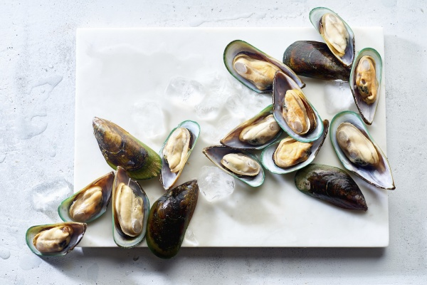raw green lipped mussels on a