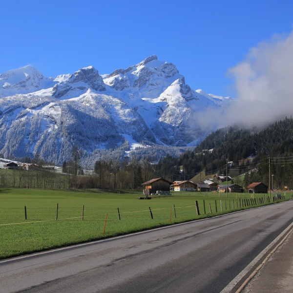 spring morning in the saanenland valley