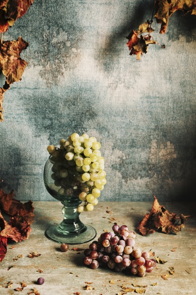 still life with grapes and autumn