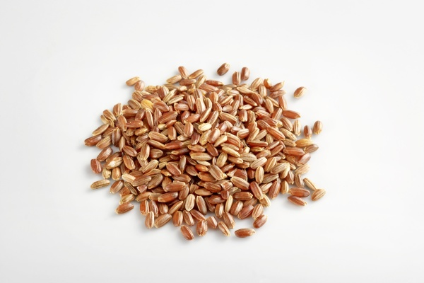red rice from camargue france