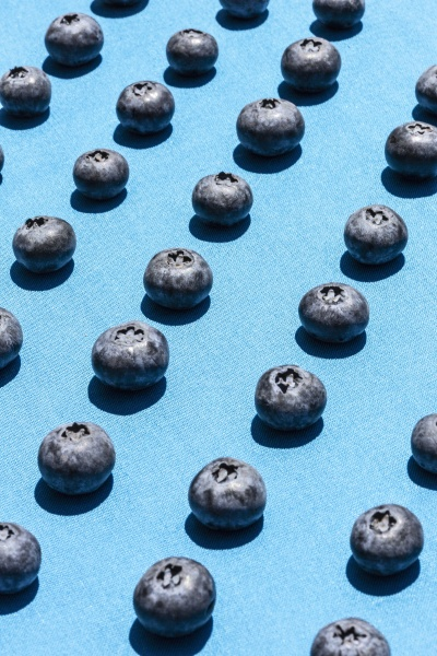 blueberries in diagonal rows laid out