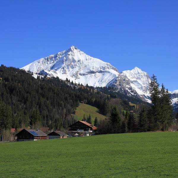 snow covered mountains spitzhorn und arpelistock