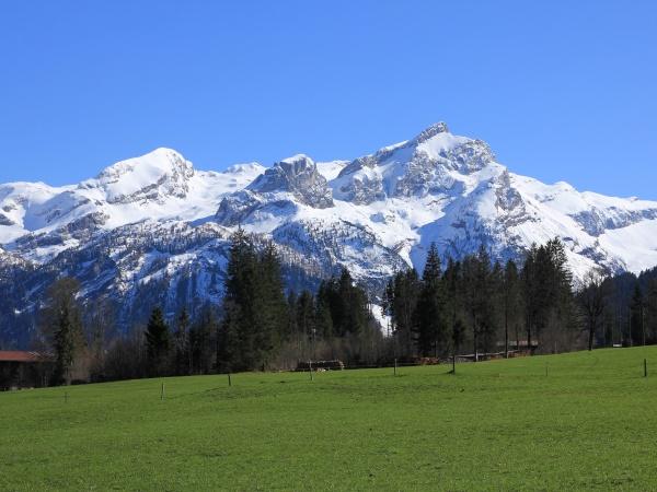 mountains, sanetschhore, , mittaghore, and, schluchhore, seen - 29902001