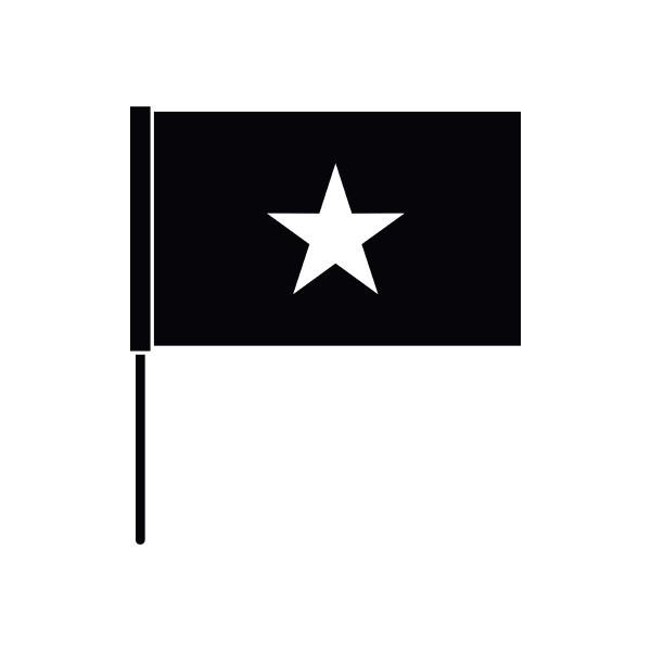 vietnam flag icon simple style