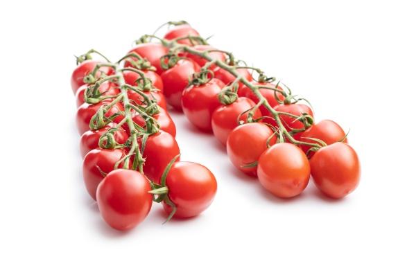 fresh red cherry tomatoes small