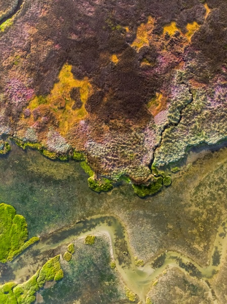 aerial view of velddrift wetland colourful