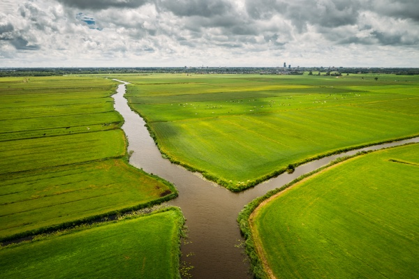 aerial view of canals through agricultural