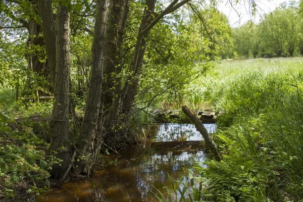 german countryside landscape lower rhine region