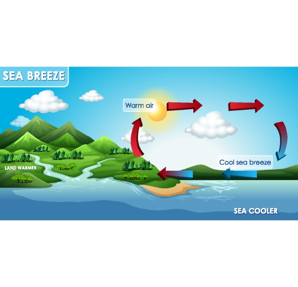 science poster design for sea breeze