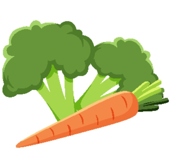 broccoli and carrot vegetable on white