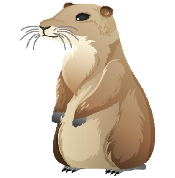 animal cartoon character of prairie dog