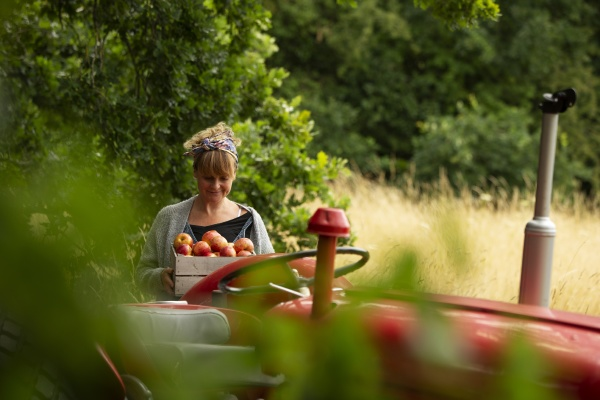 woman with fresh harvested apples at