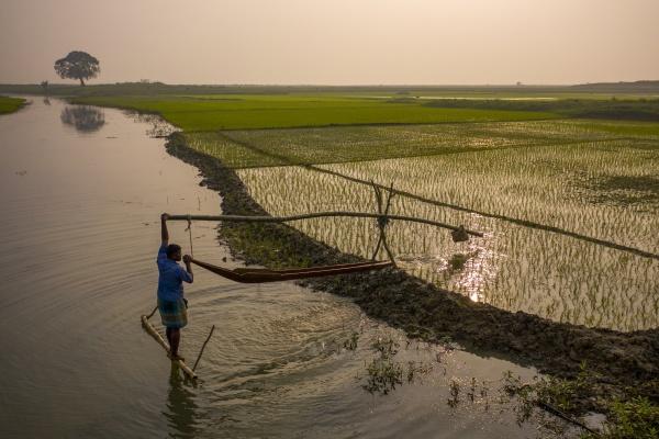 tahirpur bangladesh 24 january 2021