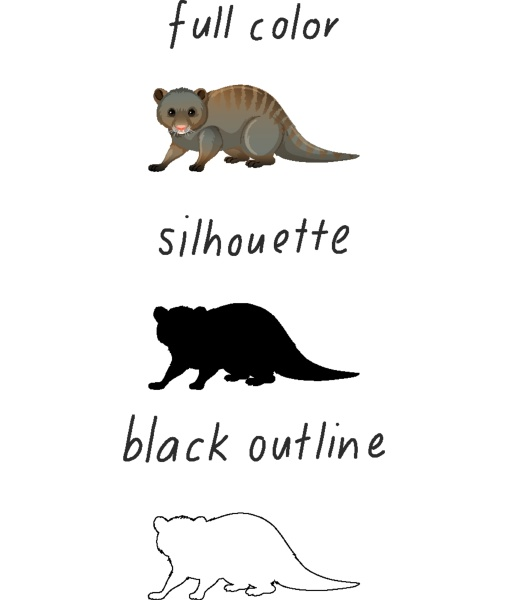 set of animal in color silhouette