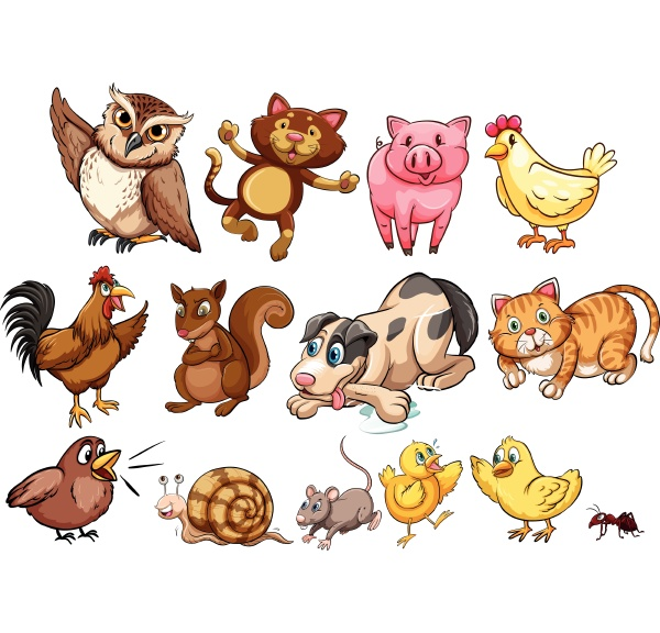 different type of farm animal and