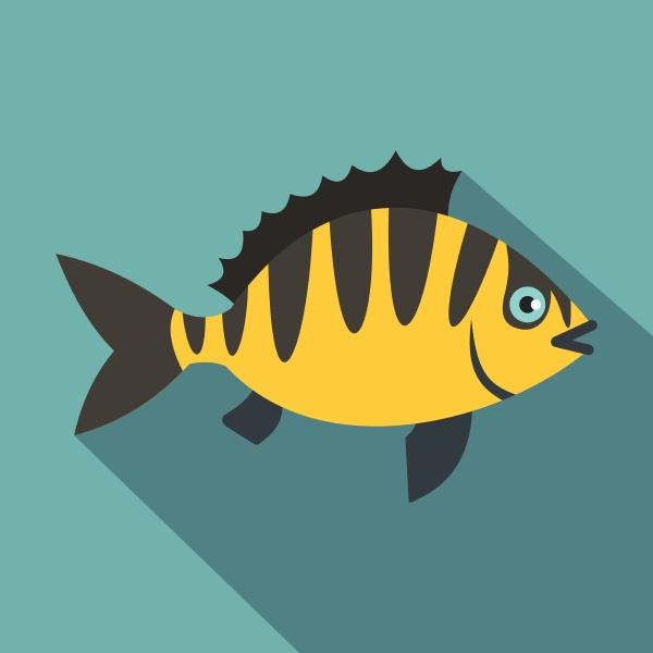 perch fish icon flat style