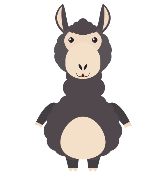 black alpaca on white background