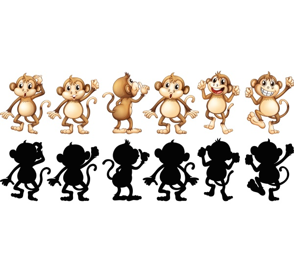 monkeys and its silhouette in different