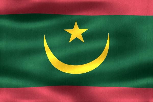 3d illustration of a mauritania flag