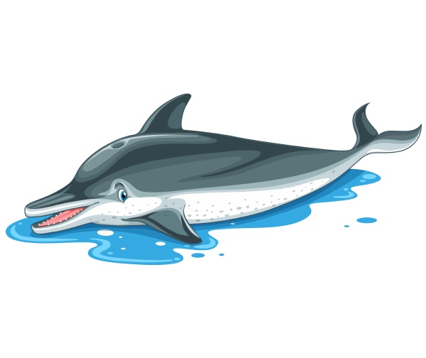 dolphin with cute face on water