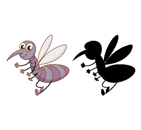 set of insect cartoon character and