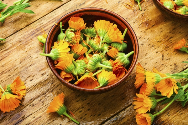 marigold flowers or calendula space for