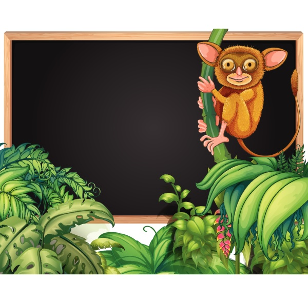 frame template with little loris