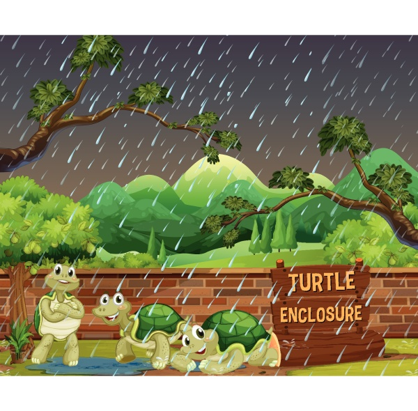 zoo scene with three turtles in