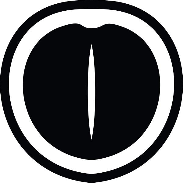macadamia nut icon simple style