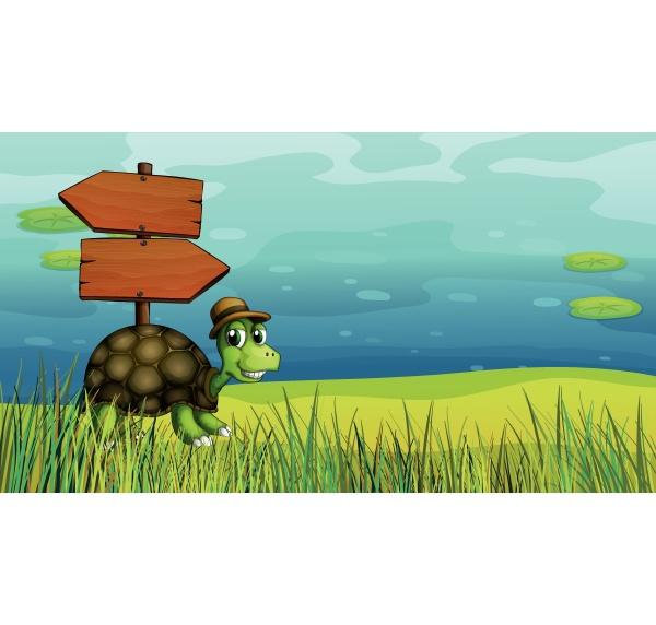 a turtle near the wooden arrow