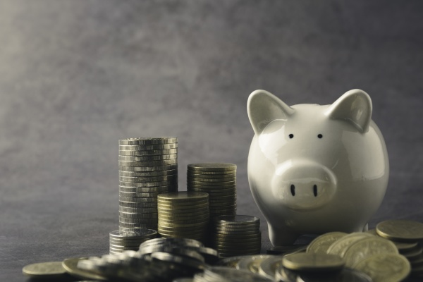 a piggy bank with money coin