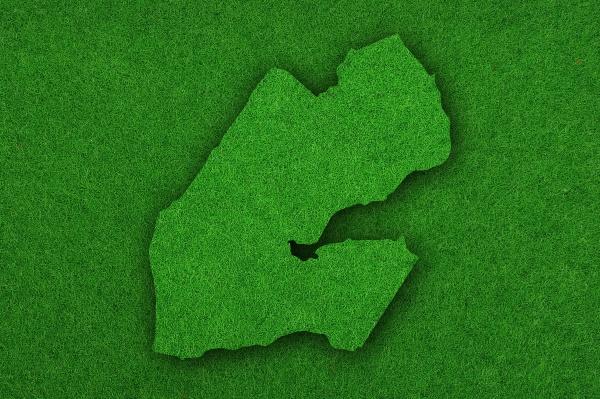 map of djibouti on green felt