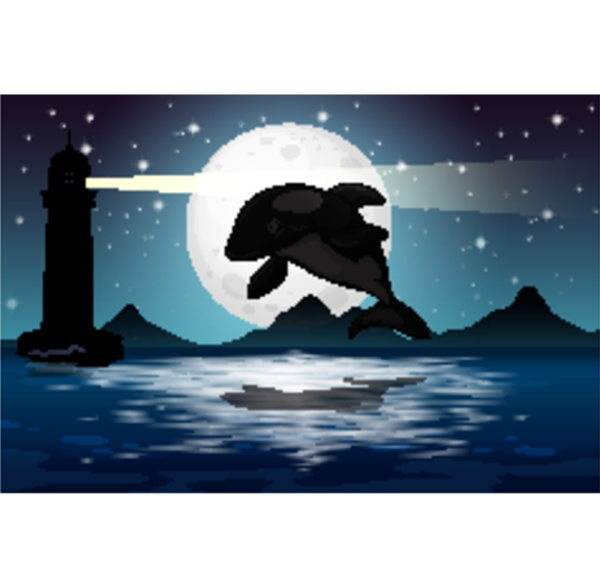 dolphin in nature scene silhouette