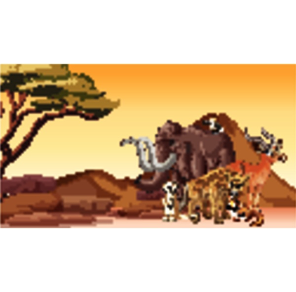 scene with many animals in the
