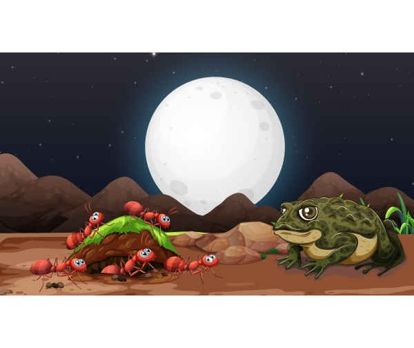 nature scene with ants and toad