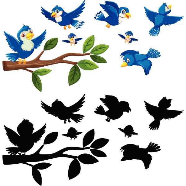 colour and silhouette birds
