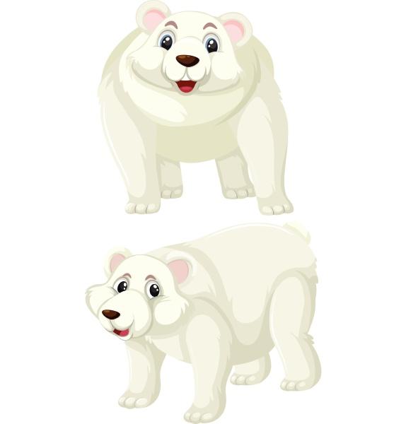 set of polar bear character
