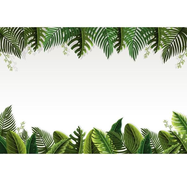 beautiful palm leaf border
