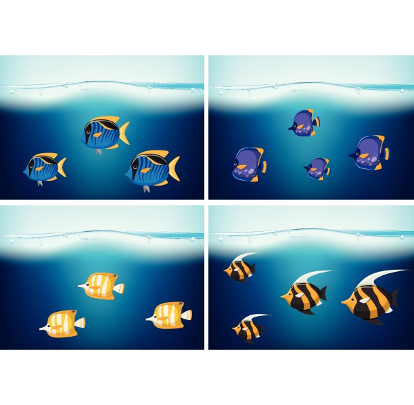 four underwater scenes with different types