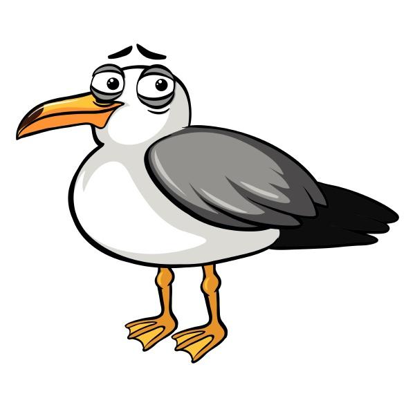 pigeon bird with sad smile