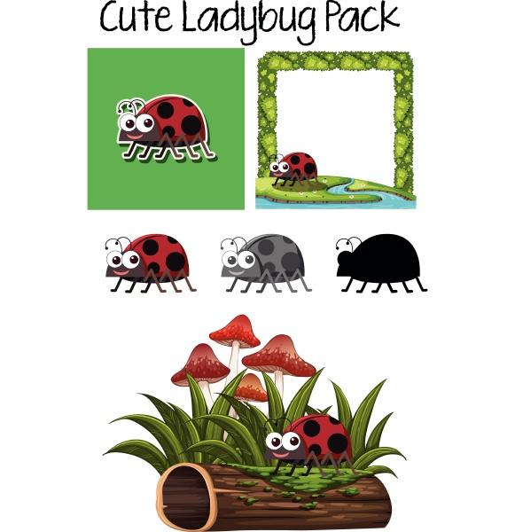 set of ladybug character