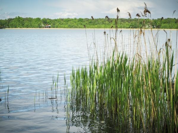 lake storkow in brandenburg