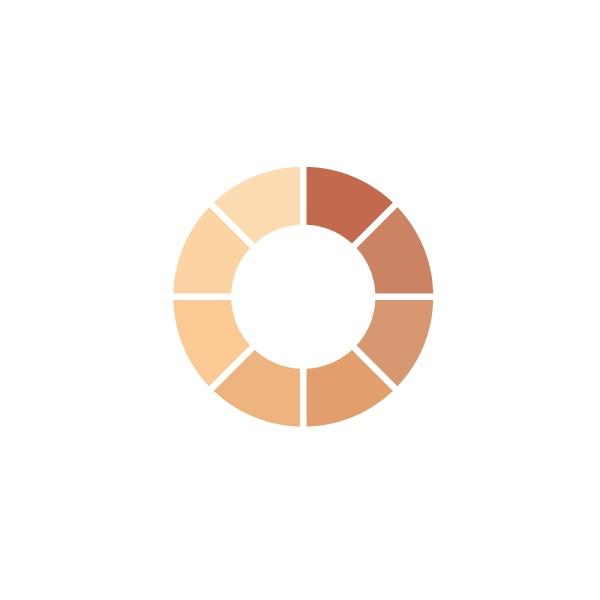 skin color palette level icon vector