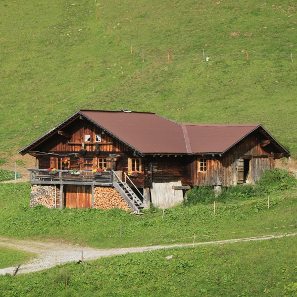 small old timber hut in the