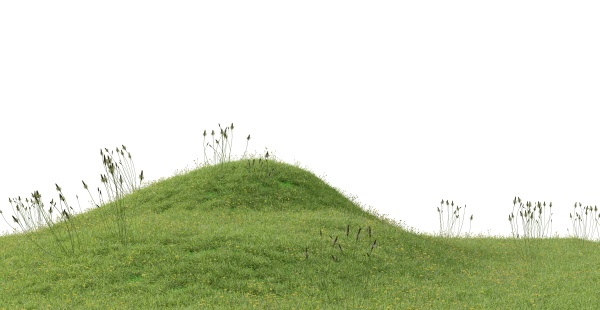 grassy hill on a white background
