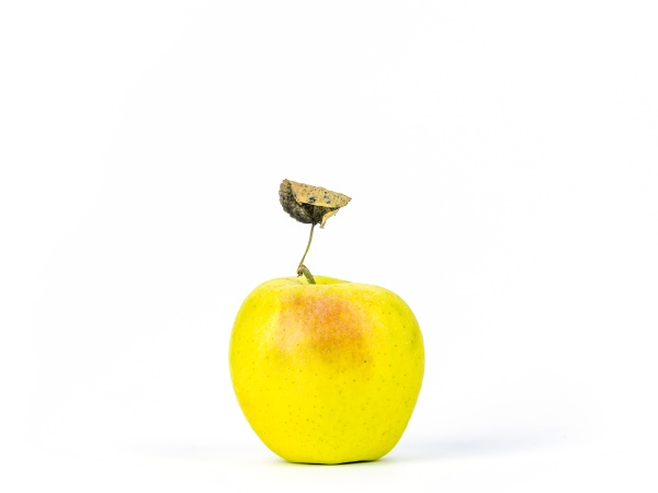 fruit apple on a white background
